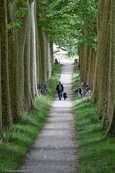 Le Canal du Midi, (Aude) www.audetourisme.com