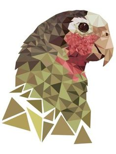Parrot - graphic design assignment - using triangles, create a drawing of an animal/bird #op-kunst #värviõpetus #arhitektoonika