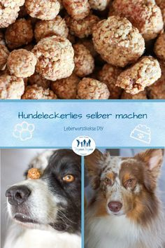 Hundeleckerlis selber machen mit Leberwurst idea the world training craft craft diy craft for kids craft no sew craft to sale Easy Cake Recipes, Easy Chicken Recipes, Baby Food Recipes, Pumpkin Recipes For Dogs, Cheap Meals, Easy Meals, Liver Sausage, High Fat Diet, Nutritious Meals