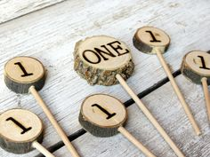 First Birthday Cake Cupcake Toppers Set of 6 // Woodland Rustic Birthday // Tree Slice Cake Topper