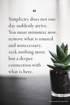 Apply to relationships, friendships, possessions, emotions, boundaries--really, every aspect of my life could benefit from this principal. Offer thanks and gratitude for what's here and now and what's truly important. #simplicity #Minimalism #Simplify