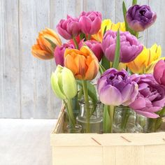 Flowers from the Flower Market - Mixed Tulips. Styling and photography © Ingrid Henningsson/Of Spring and Summer.