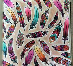 Feathers Enchanted Forest. Penas Floresta Encantada. Johanna Basford...intensity gradient, white shadow