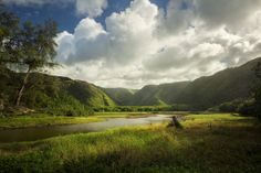 I want to live here Big Island Hawaii  #landscape #live #island #hawaii #photography
