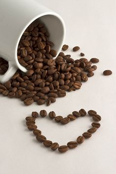 3 Eye-Opening Tips: Coffee Barista Men but first coffee favorite things.Coffee Scrub Photography coffee date pink.Hot Coffee With Milk. Coffee Menu, Coffee Cafe, Coffee Break, Coffee Drinks, Coffee Shop, Morning Coffee, Coffee Poster, Coffee Signs, Coffee Lovers