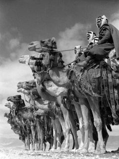 Syria 1940'S  Photographer:	Margaret Bourke-White