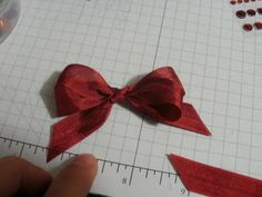 Double Loop Bows