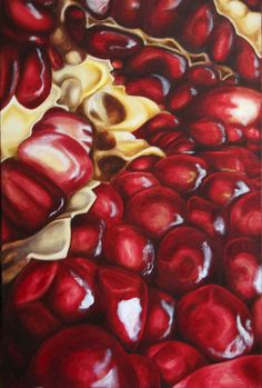 pomegranate by on DeviantArt - ART: Fruit: Apple - Cherry - Lemon - Pomegranate- Strawberry - Watermelon - Natural Forms Gcse, Natural Form Art, Pomegranate Art, Pomegranate Drawing, Gcse Art Sketchbook, Sketchbook Layout, Art Doodle, Close Up Art, Fruit Painting