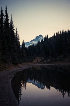 Find images and videos about nature, forest and mountains on We Heart It - the app to get lost in what you love. Beautiful World, Beautiful Places, Landscape Photography, Nature Photography, Night Photography, Fuerza Natural, Nature Landscape, Photos Voyages, To Infinity And Beyond