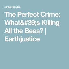 The Perfect Crime: What's Killing All the Bees? | Earthjustice