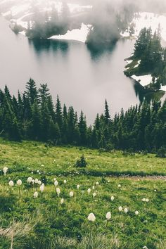 expressions-of-nature: Eunice Lake, Washington by Karen Sykes What A Wonderful World, Beautiful World, Beautiful Places, Beautiful Pictures, Simply Beautiful, Landscape Photography, Nature Photography, Le Far West, Art Graphique