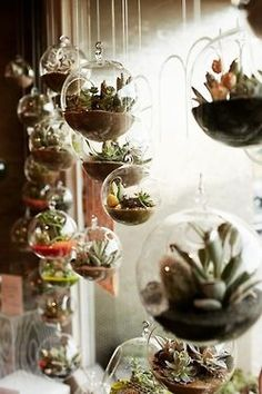 Would be very cool and more practical than string gardens - perhaps hanging flower vases... Zo haal je de tuin ook naar binnen!