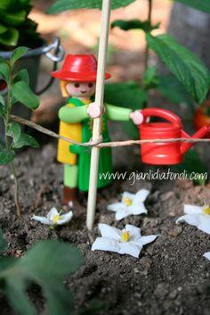 Giato Salò: Il mio orto