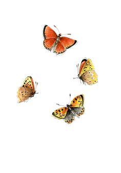 ORIGINAL Painting Butterflies Watercolors Wall by ForestSpiritArt, £15.00