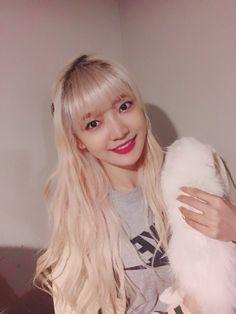 EVERGLOW / Onda Kpop Girl Groups, Korean Girl Groups, Kpop Girls, Yuehua Entertainment, Korean Bands, 1 Girl, Daily Photo, Airport Style, Ulzzang Girl