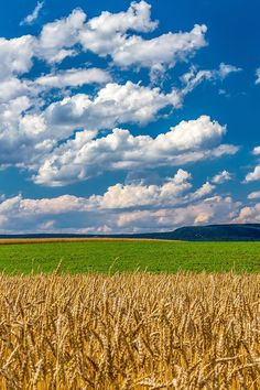 Amber Waves of Grain Wheat Field Mountain Farming Cool Landscapes, Beautiful Landscapes, Landscape Paintings, Farm Photography, Landscape Photography, Beautiful Sky, Beautiful Islands, Wallpaper Paisajes, The Art Sherpa