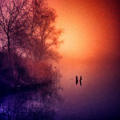 #mlha nad #jezerem #fog #over a #lake #winter #orange
