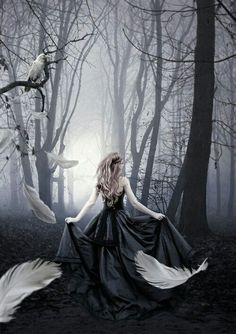 Just my version of girl in black with the raven. The White raven Dark Fantasy Art, Fantasy Magic, Fantasy World, Deep Photos, White Raven, Dark Princess, Beautiful Dark Art, Fantasy Gowns, Victorian Goth
