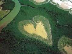The « Cœur de Voh » This Completely natural heart shaped form is located in the area of Voh, on the mainland of New Caledonia.