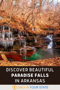 Enjoy a moderate hike to the beautiful Paradise Falls in Arkansas. The trail actually offers several waterfalls and natural swimming hole with a waterslide. It's incredible all year but it's a summer favorite. Arkansas Vacations, Ozark National Forest, Paradise Falls, Hidden Beach, Manatee, Beautiful Waterfalls, Road Trip Usa, Adventure Is Out There, Nature Scenes