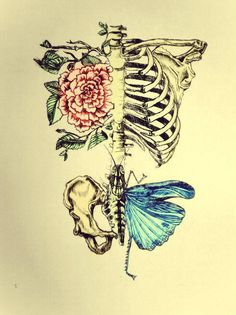 This would make and awesome tattoo. #butterfly #roses #skeleton