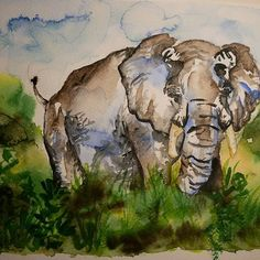 #elephant #watercolor #watercolour #watercolours Elephant Watercolor, Watercolours, Mount Rushmore, Christmas Cards, Nature, Painting, Art, Water Colors, Christmas E Cards
