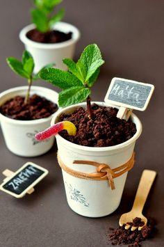 edible flower pots - mascarpone/yogurt base, crumbled chocolate cookies, mint, jelly snakes | VÝPEČKY: ČOKOLÁDOVÉ SUŠENKY & JEDLÉ KVĚTINÁČE