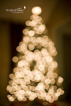 Better photos of your christmas tree with August Tea Photography