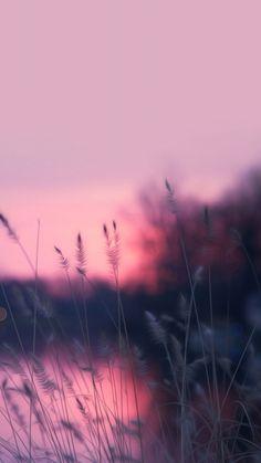 Pink iPhone X wallpaper