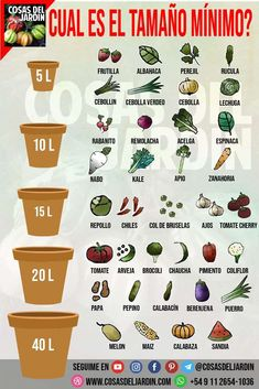 What is the minimum recommended container size for each crop . - What is the minimum recommended container size for each crop Vegetable garden, Herb gard - Eco Garden, Vegetable Garden Design, Fruit Garden, Edible Garden, Vegetable Gardening, Indoor Garden, Container Gardening Vegetables, Planting Vegetables, Balcony Garden