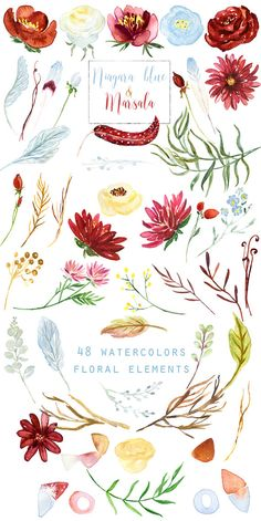 Marsala burgundy dahlia and soft blue flowers watercolor
