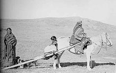 Native American Travois (Indian Drag Sleds for Dogs and Horses)