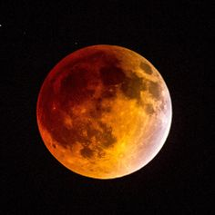 """""""Blood Moon"""" Captured here in Arizona April 14, 2014 by our friend, Tim Litten"""
