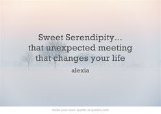 Sweet Serendipity... that unexpected meeting that changes your life