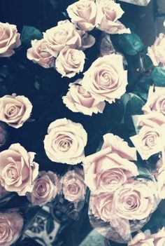 What beautiful flowers ☺️ #whiteroses