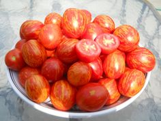 Russian Queen Tomato | Check out Front Door Farms #StripedCherryTomatoes HERE: http://www.frontdoorfarms.com/products/aquaponic-heirloom-striped-cherry-tomatoes-mix