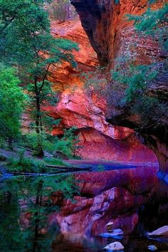 The West Fork of Oak Creek Canyon at Red Rock Secret Mountain Wilderness, Arizona by Michael D. McCumber