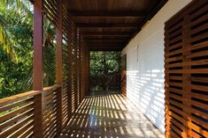 Gallery of Tropical House / Camarim Architects - 11