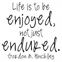 Life is to be Enjoyed Not Just Endured TT119