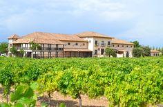 """Hoy en Orgànics magazine vamos a hacer nuestra primera """"cata Transversal"""" de tres vinos blancos ecológicos, para ello hemos catado tres vinos blancos de Bodegas Sierra Norte, los Olcaviana: un Sauvignon Blanc, un Chardonnay y un Verdejo"""