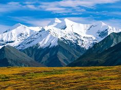 Denali National Park, Alaska I have seen this personally and it is awesome!!