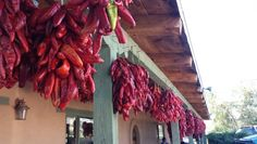 Chillies drying under the veranda, Corrales, New Mexico