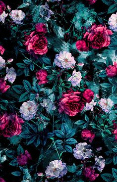 RPE FLORAL ABSTRACT III Flower Wallpaper Cool Cute Wallpapers Iphone