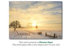 Golden Sunset on a winter's day holiday cards personalized on the inside with your message.