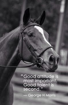 Good attitude is most important.