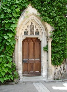 arched doorway - beautifully covered in ivy. Arch Doorway, Entrance Doors, Portal, Arched Windows, Windows And Doors, Gothic Windows, Yellow Doors, Cool Doors, Antique Doors