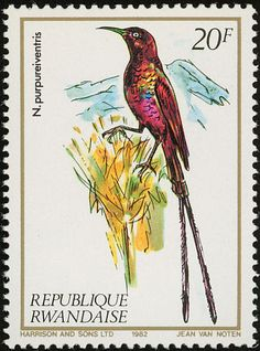 Purple-breasted Sunbird stamps - mainly images - gallery format