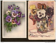 5k. Flora, Flower - flowers - pansy