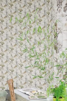 Designers Guild Winter Palace Wallpaper Silver Fabric