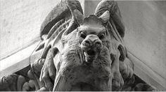 gargoyles in England | Victorian neo gothic stone dragon on Pelham Street, Nottingham